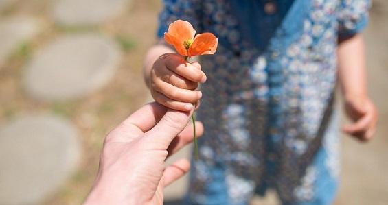 Reflexão: A bondade imerecida